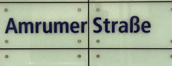 U Amrumer Straße is one of Besuchte Berliner Bahnhöfe.