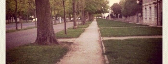 Cours du Général de Gaulle is one of Dijon : rues & places.