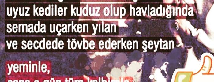 Kalonoros is one of antalya~ alanya~ side~belek.