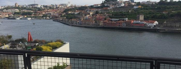 Bogani cafe is one of Sítios que valem a pena ir no Grande Porto.