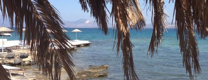 Dodo Beach Club is one of Best Of CESME.