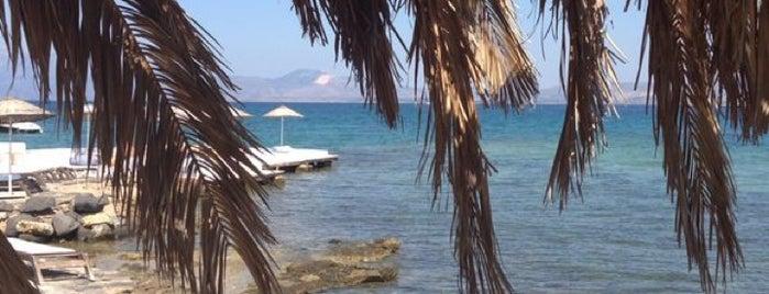 Dodo Beach Club is one of Gidilen & Beğenilen.