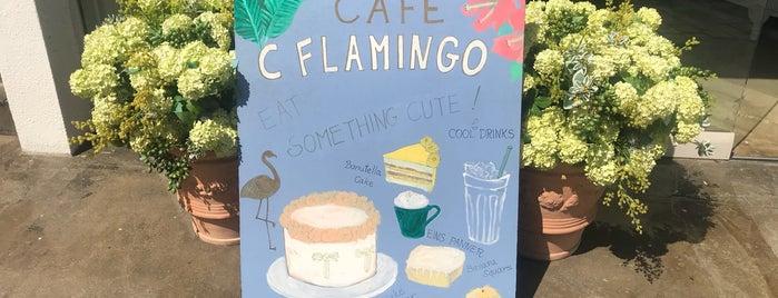C Flamingo is one of 🇰🇷👆🏿.