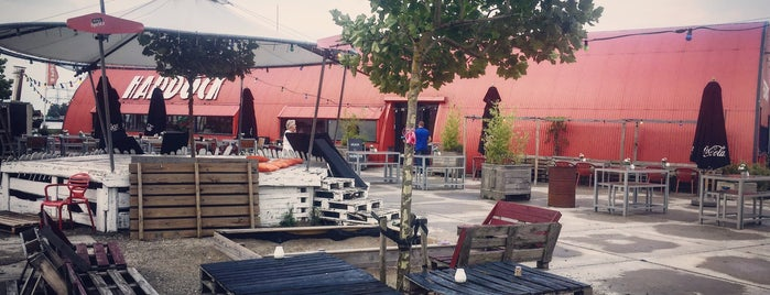 Haddock is one of Z☼nnige terrassen in Amsterdam.