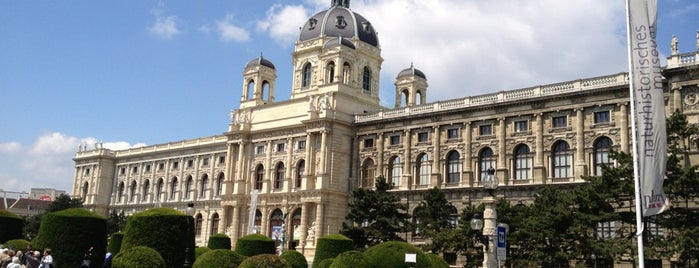Museo di Storia Naturale is one of Vienna.