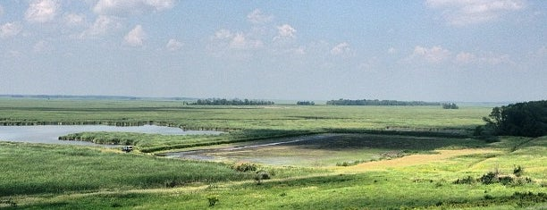 Horicon Marsh is one of Guide to Horicon's best spots.