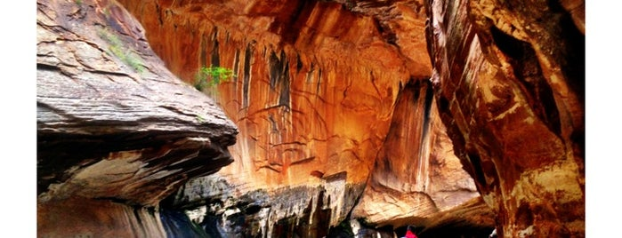 Zion National Park is one of National Parks.