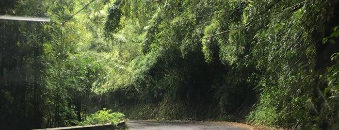 Road to Hana (Hana Highway) is one of Maui.