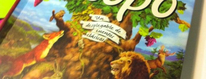 Green Kids is one of lomejordebenimaclet.com.