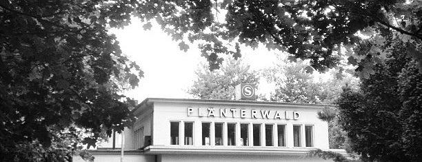 S Plänterwald is one of Besuchte Berliner Bahnhöfe.