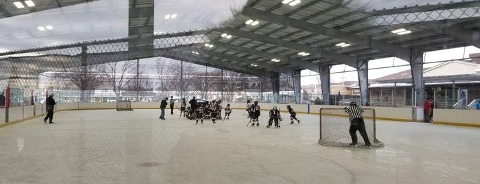 Niles IceLand Skate & Swim is one of Chicago Rat Hockey.