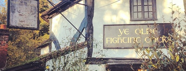 Ye Olde Fighting Cocks is one of St Albans pubs.