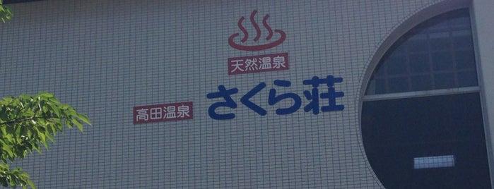 高田温泉さくら荘 is one of 日帰り温泉.