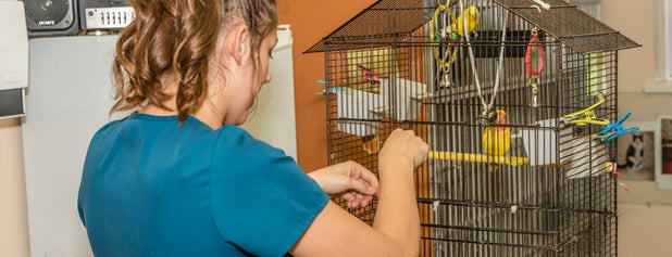 Vedder Mountain Veterinary Clinic is one of Veterinary Clinics Across Western Canada.