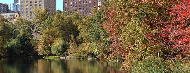 Central Park - The Pool is one of NYC Manhattan 14th-65th Sts & Central Park.