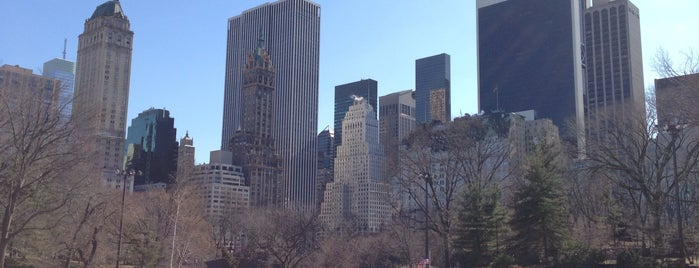 Wollman Rink is one of NYC Manhattan 14th-65th Sts & Central Park.