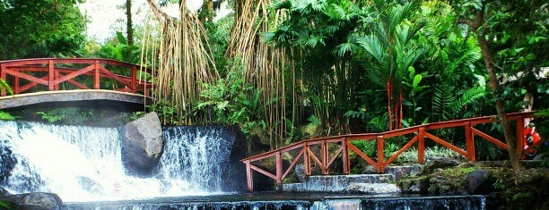 Tabacon Grand Spa Thermal Resort is one of Costa Rica.