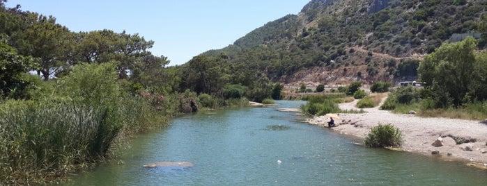 Sarısu Piknik ve Plaj Alanı is one of antalya.
