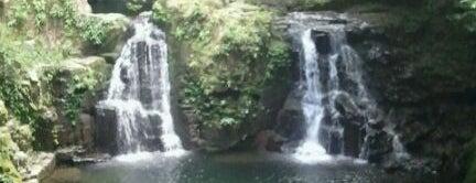 赤目四十八滝 is one of 日本の滝百選.