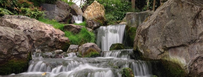 Kyoto Garden is one of London Calling: LDN To Do.