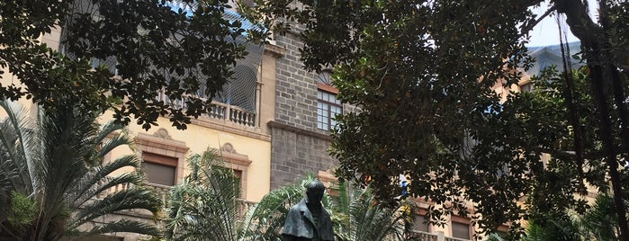 Plaza de San Francisco is one of Turismo por Tenerife.