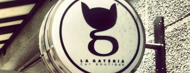 La Gatería is one of Capitalino..