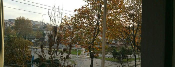 Akpınar is one of Bursa | Osmangazi İlçesi Mahalleleri.