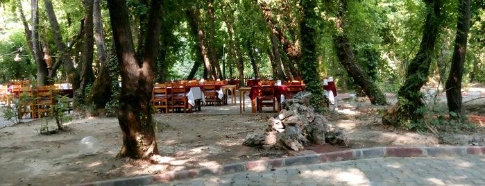 Günlüklü Restaurant is one of MUĞLA YEMEK.