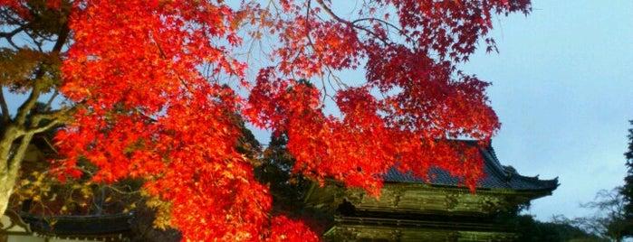 高雄山 神護寺 (Jingo-ji Temple) is one of お気に入り.