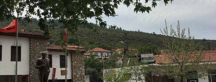 güzelköy meydan kahvesi is one of İzmir.