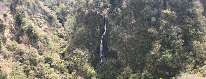 震動の滝 is one of 日本の滝百選.
