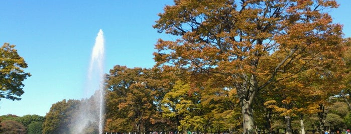 Yoyogi Park is one of Tokyo's Best Great Outdoors - 2013.