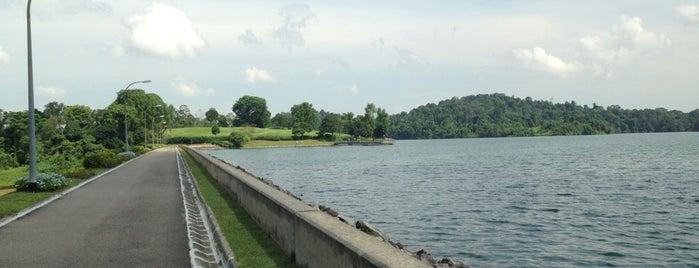Upper Peirce Reservoir Park is one of Trek Across Singapore.