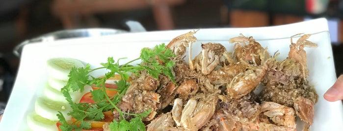 ไร่ริชชา is one of ลำพูน, ลำปาง, แพร่, น่าน, อุตรดิตถ์.