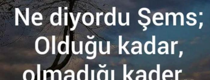 Turkish Do&Co is one of AntaLya :)).