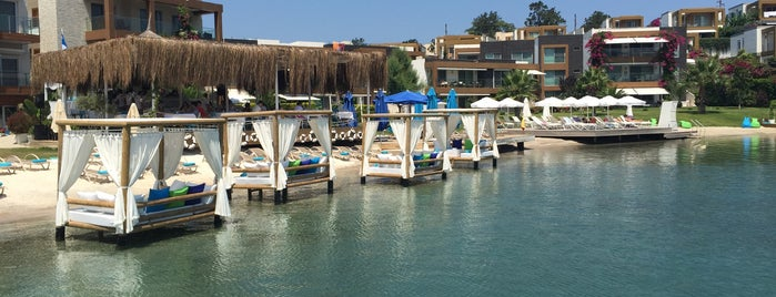 X Beach is one of Cesme bodrum.