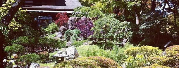 Japanese Tea Garden is one of San Fran!.