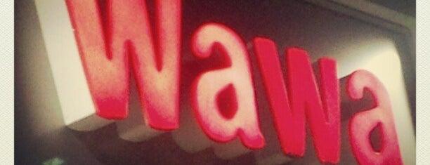 Wawa is one of My magical mystery Wawa tour.