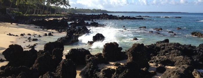 Secret Beach is one of Potential Vendors.