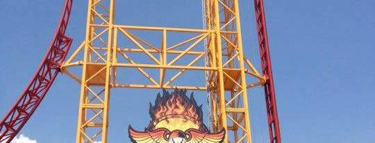 Dare Devil Dive is one of FamilyFun's Top Amusement Park Rides.