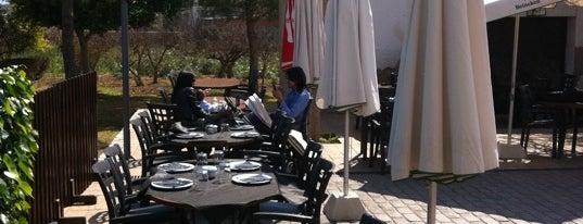 Finca Santiago is one of Must-visit Food in Murcia.
