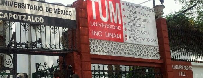 TUM (Tecnológico Universitario De México) is one of DF Todas.