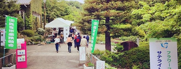 北山緑化植物園 is one of 公園.