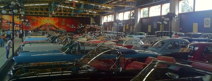 Museo del Automóvil is one of Galerías y Museos @ DF.