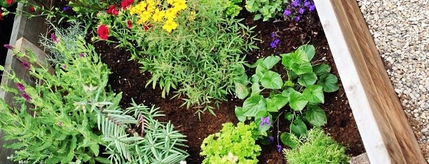 Laguna Gardens Nursery is one of Great Orange County Garden Centers.