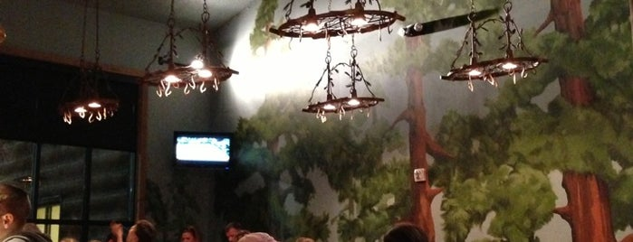 Camp Critter Bar & Grille at Great Wolf Lodge is one of Mason Lodge.