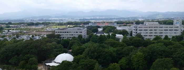 グリーンタワー相模原 is one of Observation Towers @ Japan.