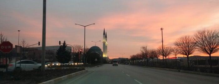 Hasan Polatkan | Atalar Caddesi is one of Eskişehir'deki Caddeler.