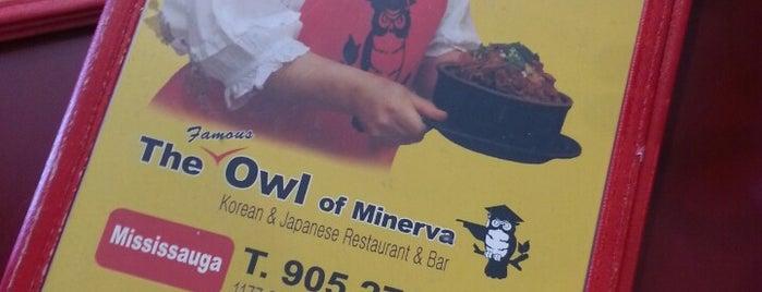 Owl Of Minerva is one of Nom nom in GTA.