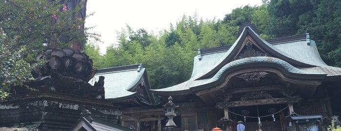 醫王山 鏡池院 清滝寺 (第35番札所) is one of 四国八十八ヶ所霊場 88 temples in Shikoku.